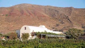 Domaine Sigalas Winery, Baxedes, Oia, Santorini
